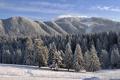Картинка зима, снег, деревья, пейзаж, горы, природа