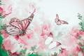 Картинка ветки, цветение, бабочки, пионы, лепестки, butterfly, bloom