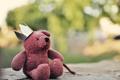 Картинка игрушка, корона, медведь, мишка
