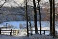 Картинка зима, деревья, забор, кони