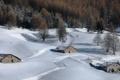 Картинка зима, лес, снег, дома