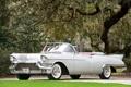 Картинка серый, дерево, Eldorado, Cadillac, кабриолет, классика, передок