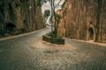 Картинка Italy, Campania, Sorrento