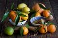 Картинка листья, цитрус, фрукты, мандарины