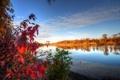 Картинка осень, небо, листья, облака, деревья, река