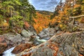 Картинка осень, лес, пейзаж, природа, камни, фото, HDR