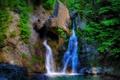Картинка лес, деревья, скала, камни, водопад, поток