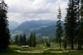 Картинка лето, горы, ели, долина, германия