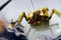 Картинка снег, горы, человек, робот, паук, лапы, кабина