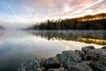Картинка свежесть, туман, озеро, камни, берег, утро