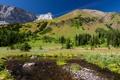 Картинка зелень, трава, вода, деревья, пейзаж, горы, природа