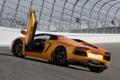 Картинка автомобиль, открытые двери, roadster, задок, LP700-4, Lamborghini Aventador
