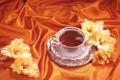 Картинка цветы, оранжевый, чай, шелк, атлас