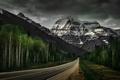 Картинка дорога, лес, горы, природа, Mount Robson