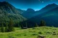 Картинка зелень, лес, небо, трава, деревья, горы, природа
