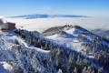 Картинка лес, снег, горы, дома, база, подьемник