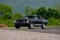 Картинка Ford, Shelby, GT500, форд, шелби, 1968
