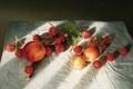 Картинка лето, свет, ягоды, тень, картина, земляника, арт