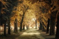 Картинка город, осень, парк