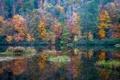 Картинка США, лес, осень, Грейсон Вэлли, Алабама, озеро, деревья
