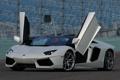 Картинка Roadster, Lamborghini, двери, суперкар, автомобиль, LP700-4, Aventador