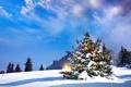 Картинка лед, небо, свет, снег, lights, елка, Новый год