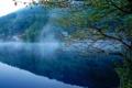 Картинка лес, туман, река, дома, Природа