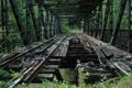 Картинка разрушен, рельсы, заброшен, железнодорожный мост