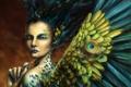 Картинка павлина, девушка, арт, крылья, фэнтези, перья, перо