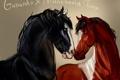 Картинка черный, лошади, пара, Gallardo x Manchania Tinta, коричневый цвета