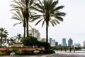 Картинка город, пальма, голубой, здание, небоскреб, Флорида, USA