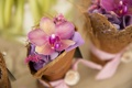 Картинка цветы, лепестки, орхидея, гортензия, корзинки