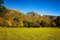 Картинка осень, лес, трава, деревья, горы, поляна, водопад