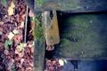 Картинка листья, осень, скамейка