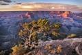 Картинка National Park, Landscape, Grand Canyon, Arizona