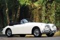 Картинка белый, деревья, фон, Jaguar, Ягуар, кабриолет, кусты