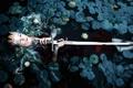 Картинка девушка, меч, Kindra Nikole, Nimiane