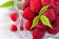 Картинка листья, ягоды, малина, тарелка, зеленые, креманка