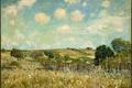 Картинка лето, трава, природа, деревня