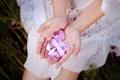 Картинка руки, лепестки, розовые
