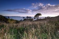 Картинка море, пейзаж, New Zealand, Waikato, Hahei