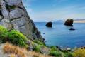 Картинка море, горы, скала, камни, берег, Черное, кусты