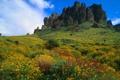 Картинка небо, трава, пейзаж, цветы, горы, скалы