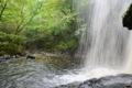 Картинка лес, брызги, река, водопад