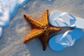 Картинка summer, beach, sea, sand, vacation, starfish, step-ins
