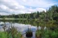 Картинка лес, небо, облака, деревья, пейзаж, озеро, Alaska