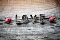 Картинка любовь, буквы, дерево, надпись, розы, сухие, love