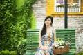 Картинка девушка, цветы, настроение, скамья