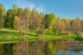 Картинка лес, деревья, парк, река, Природа