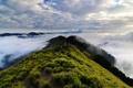 Картинка зелень, трава, облака, горы, высота, холм